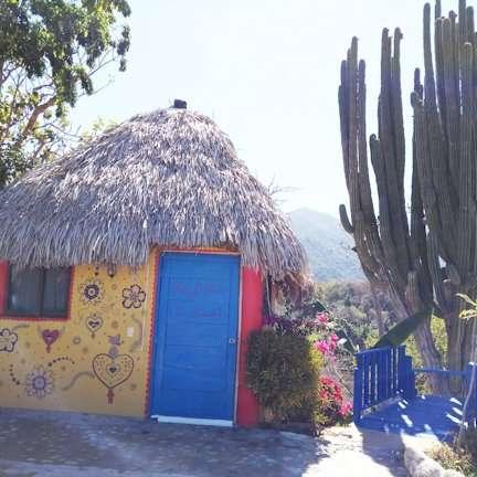 Happy Hill Lola Betran La Grande Next to 400 yr. Old Cactus