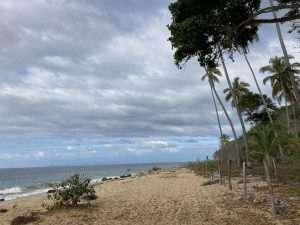 Beach House photos 27