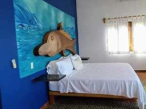 El-Delfin-featured-image