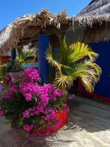 """Foliage – """"Las Chicas Bailando"""" – Happy Hill Room - Treasure by The Sea Resort"""
